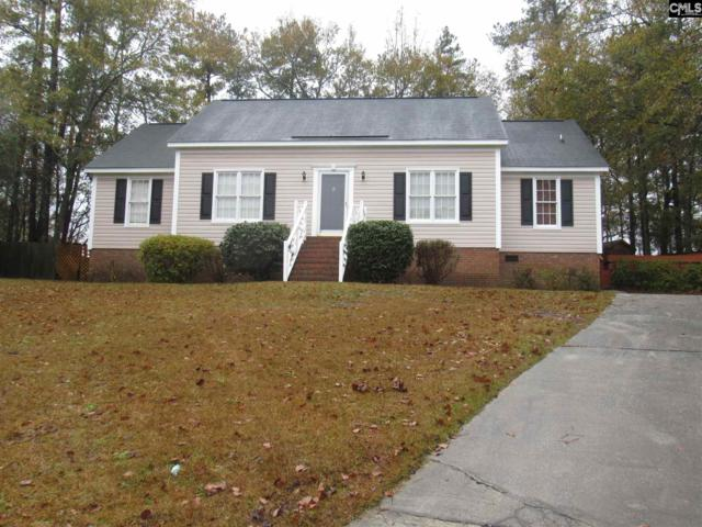 9 Finn Court, Columbia, SC 29223 (MLS #461119) :: EXIT Real Estate Consultants