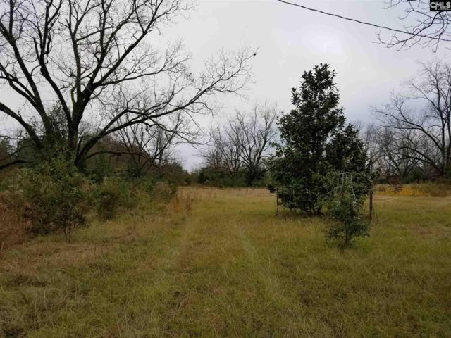 272 Rister Road, Gaston, SC 29053 (MLS #461148) :: Home Advantage Realty, LLC