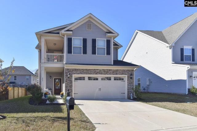 205 Dove Chase Trail, Lexington, SC 29072 (MLS #461160) :: Home Advantage Realty, LLC
