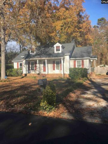 413 Serpentine Road, Irmo, SC 29063 (MLS #461167) :: EXIT Real Estate Consultants