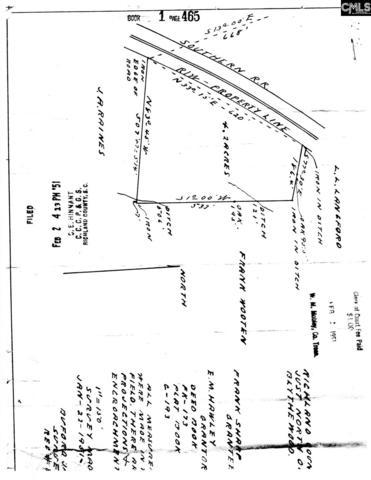 1036 Frankdale Road, Blythewood, SC 29016 (MLS #461205) :: Home Advantage Realty, LLC