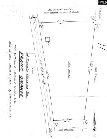 400 Boney Road, Blythewood, SC 29016 (MLS #461206) :: EXIT Real Estate Consultants