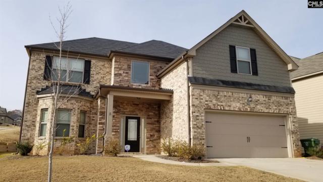 5 Stillorgan Court, Blythewood, SC 29016 (MLS #461242) :: Home Advantage Realty, LLC