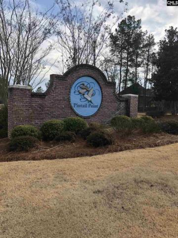 132 Pintail Lake Dr #95, Gilbert, SC 29054 (MLS #461265) :: EXIT Real Estate Consultants
