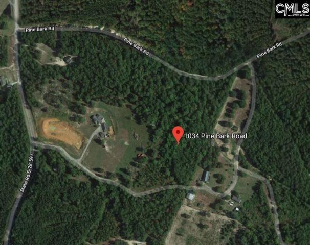 1034 Pine Bark Road, Camden, SC 29020 (MLS #461319) :: The Olivia Cooley Group at Keller Williams Realty