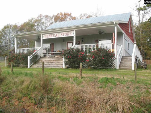 306 Saint Peters Church Road, Chapin, SC 29036 (MLS #461401) :: EXIT Real Estate Consultants
