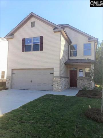 236 Bickley View Court, Chapin, SC 29036 (MLS #461534) :: EXIT Real Estate Consultants