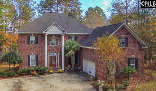 874 Peninsula Drive, Prosperity, SC 29127 (MLS #461543) :: EXIT Real Estate Consultants