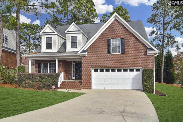 11 Polo Hill Court, Columbia, SC 29223 (MLS #461674) :: EXIT Real Estate Consultants