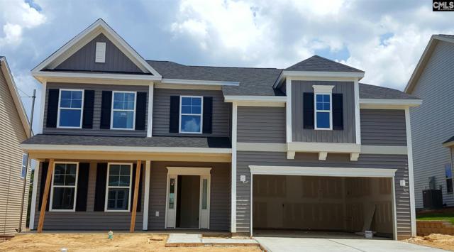 1262 Portrait Hill Drive, Chapin, SC 29036 (MLS #461704) :: EXIT Real Estate Consultants
