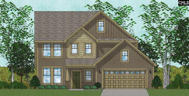 1259 Portrait Hill Drive, Chapin, SC 29036 (MLS #461706) :: EXIT Real Estate Consultants