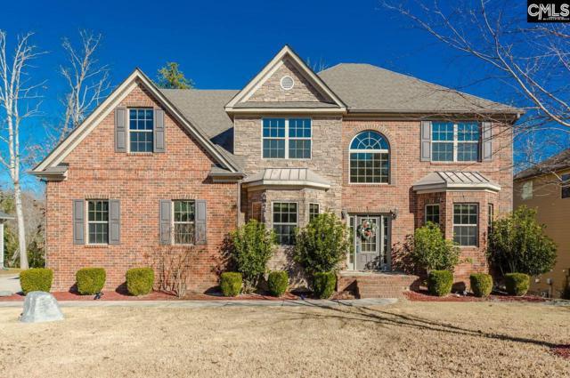 310 Brooklet Court, Lexington, SC 29072 (MLS #461745) :: Home Advantage Realty, LLC