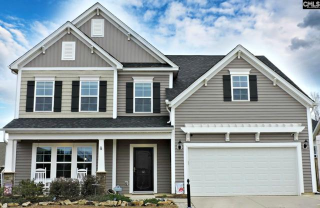 141 Breedlove Road, Chapin, SC 29036 (MLS #461775) :: The Meade Team