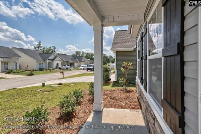 126 Elsoma Drive, Chapin, SC 29036 (MLS #461924) :: EXIT Real Estate Consultants