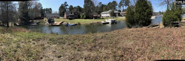 103 Long Point Drive 20, Chapin, SC 29036 (MLS #462059) :: EXIT Real Estate Consultants