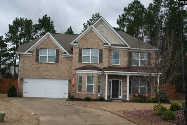 174 Montauk Drive, Lexington, SC 29072 (MLS #462118) :: EXIT Real Estate Consultants