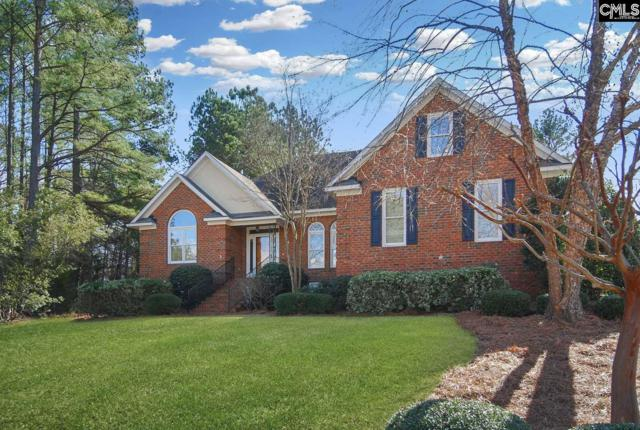 320 Oxenbridge Way, Chapin, SC 29036 (MLS #462235) :: EXIT Real Estate Consultants