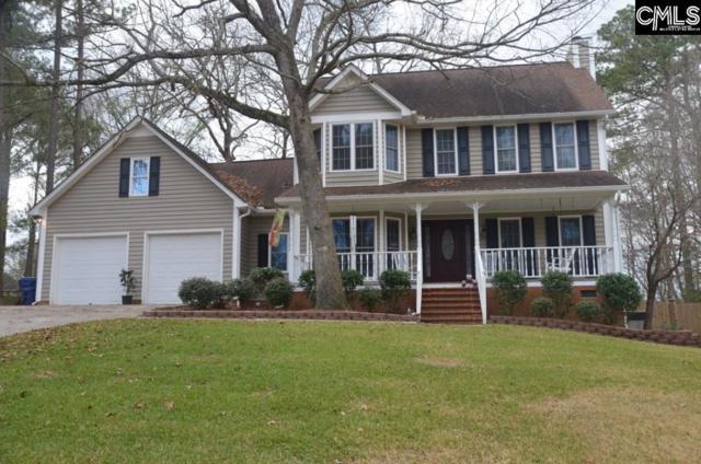217 Circleview Drive, Lexington, SC 29072 (MLS #462328) :: The Olivia Cooley Group at Keller Williams Realty