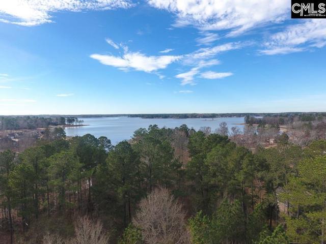 Peninsula Drive, Prosperity, SC 29127 (MLS #462332) :: EXIT Real Estate Consultants
