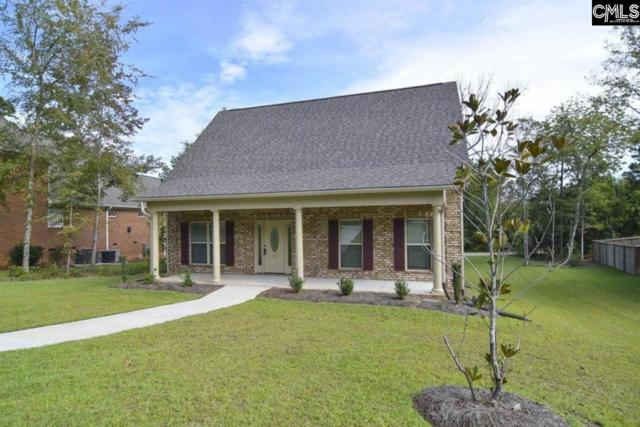 136 Night Harbor Drive, Chapin, SC 29036 (MLS #462377) :: EXIT Real Estate Consultants