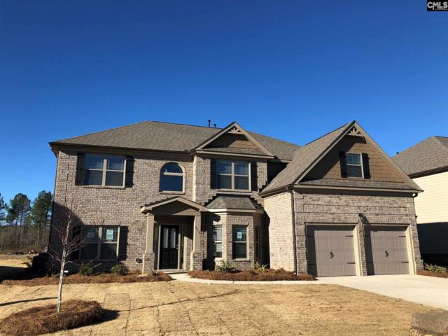 546 Lever Hill Court 72, Chapin, SC 29036 (MLS #462405) :: EXIT Real Estate Consultants