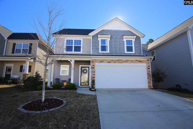 330 Lanyard Lane, Chapin, SC 29036 (MLS #462435) :: EXIT Real Estate Consultants