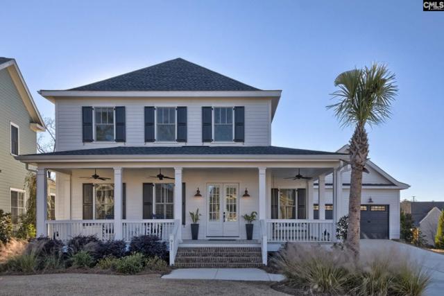 911 Battenkill Court, Lexington, SC 29072 (MLS #462516) :: EXIT Real Estate Consultants