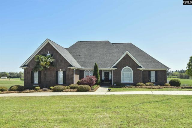 236 Morningside Drive, Newberry, SC 29108 (MLS #462527) :: Home Advantage Realty, LLC