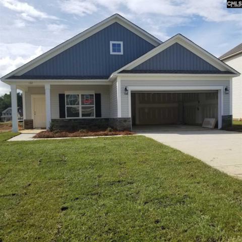 127 Elsoma Drive, Chapin, SC 29036 (MLS #462618) :: Home Advantage Realty, LLC