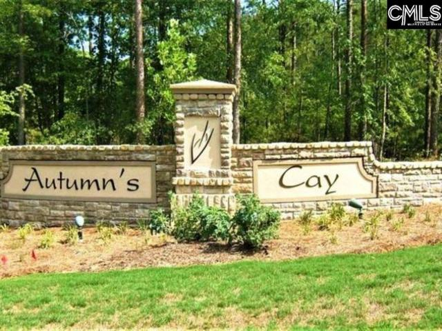 105 Autumn Drive, Prosperity, SC 29127 (MLS #462620) :: EXIT Real Estate Consultants