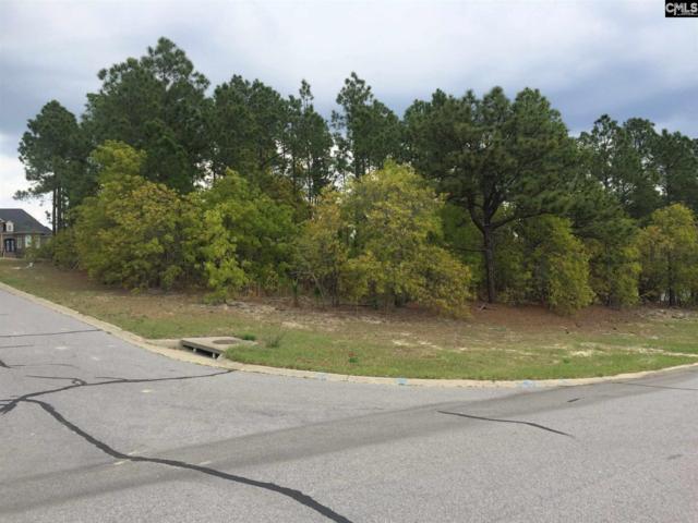 6 Running Ridge Court 51/52, Columbia, SC 29223 (MLS #462686) :: Fabulous Aiken Homes