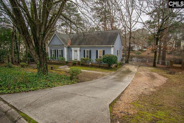 115 King George Way, Columbia, SC 29210 (MLS #462698) :: The Olivia Cooley Group at Keller Williams Realty