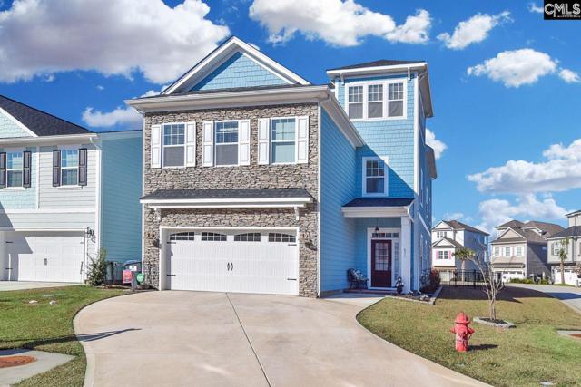 631 Pinnacle Way, Lexington, SC 29072 (MLS #462704) :: EXIT Real Estate Consultants
