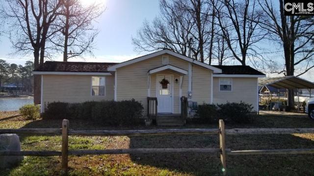 223 Pleasure Island Road, Gilbert, SC 29054 (MLS #462709) :: The Olivia Cooley Group at Keller Williams Realty
