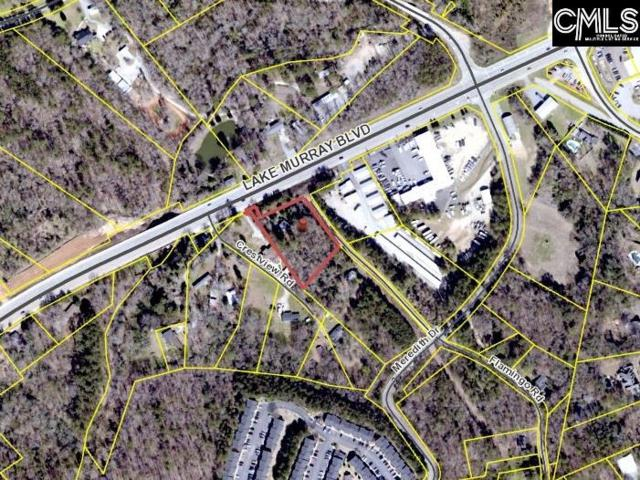 110 Flamingo Road, Columbia, SC 29212 (MLS #462721) :: EXIT Real Estate Consultants