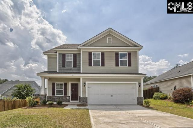 816 Red Solstice Court, Lexington, SC 29073 (MLS #462808) :: EXIT Real Estate Consultants