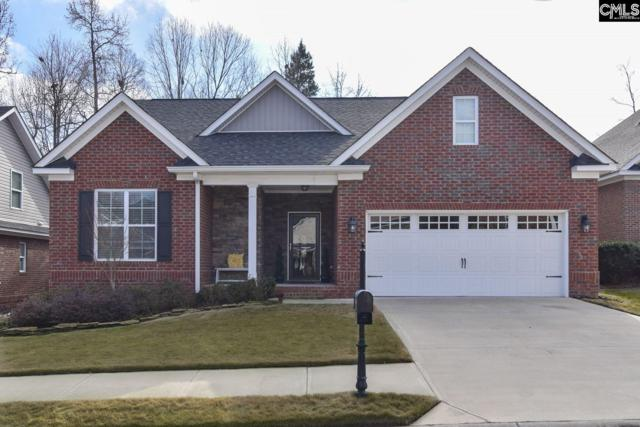 157 Stone Column Way, Columbia, SC 29212 (MLS #462848) :: The Olivia Cooley Group at Keller Williams Realty