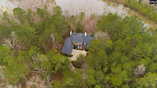 176 Cedar Lakes Drive, Blythewood, SC 29016 (MLS #462854) :: The Olivia Cooley Group at Keller Williams Realty