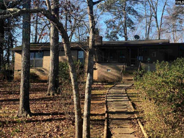 1022 Fieldstone Rd., Chapin, SC 29036 (MLS #462885) :: The Olivia Cooley Group at Keller Williams Realty