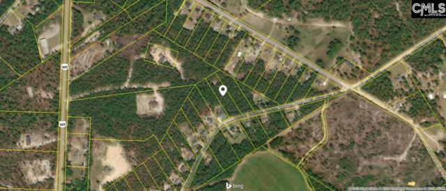 1208 Ancrum Ferry Rd, Lugoff, SC 29078 (MLS #462922) :: The Olivia Cooley Group at Keller Williams Realty