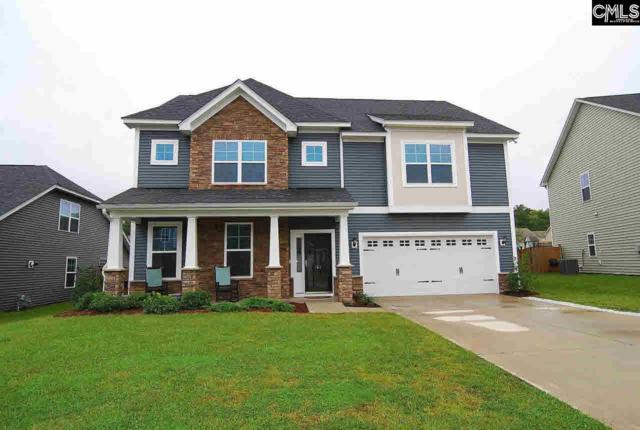165 Wingspan Way, Chapin, SC 29036 (MLS #462958) :: EXIT Real Estate Consultants