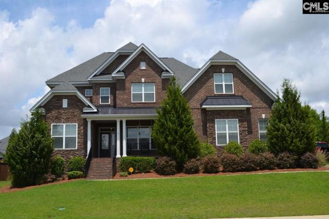 154 Lakeport Drive, Chapin, SC 29036 (MLS #463017) :: EXIT Real Estate Consultants