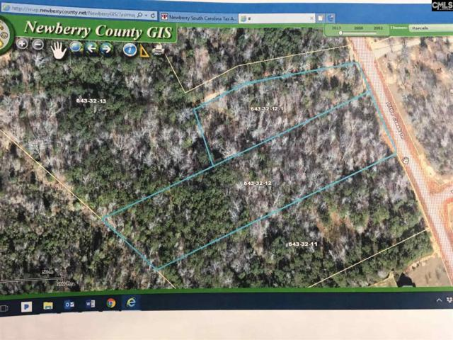 00 Little Creek Drive #12, Little Mountain, SC 29075 (MLS #463068) :: EXIT Real Estate Consultants
