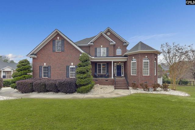 426 Caro Lane, Chapin, SC 29036 (MLS #463113) :: EXIT Real Estate Consultants