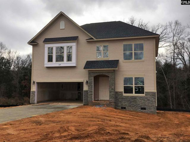 309 Saucer Way, Chapin, SC 29036 (MLS #463212) :: EXIT Real Estate Consultants