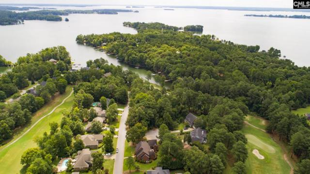 107 Pointe Overlook Drive, Chapin, SC 29036 (MLS #463240) :: EXIT Real Estate Consultants