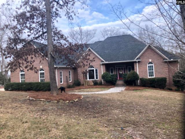 104 Red Fox Trail, Chapin, SC 29036 (MLS #463285) :: EXIT Real Estate Consultants