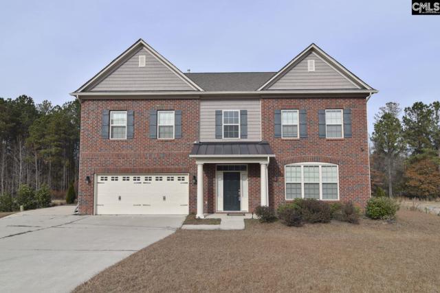 216 Barnetby Way, Columbia, SC 29229 (MLS #463415) :: Home Advantage Realty, LLC