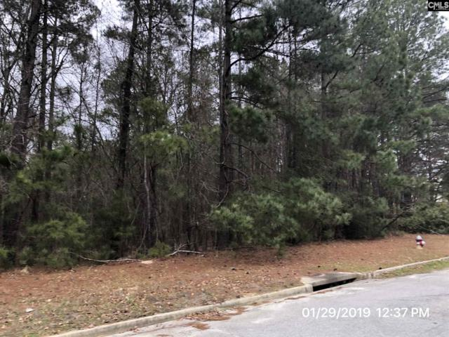 Northpoint Boulevard, Blythewood, SC 29016 (MLS #463532) :: EXIT Real Estate Consultants