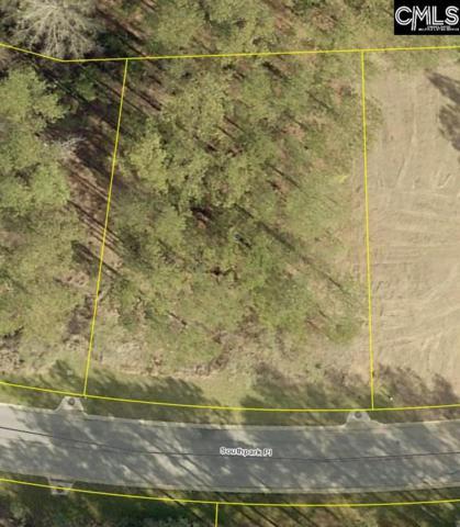 114 Southpark Place, Leesville, SC 29070 (MLS #463540) :: EXIT Real Estate Consultants